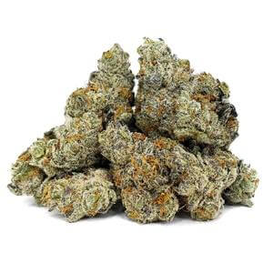 Animal Cookies Weed Strain UK