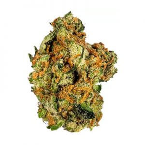 Buy Voodoo Weed Strain UK